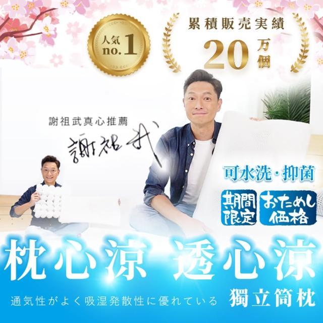 【寶媽咪】新一代日本熱銷超透氣彈性獨立筒水洗枕(2顆超值組)/