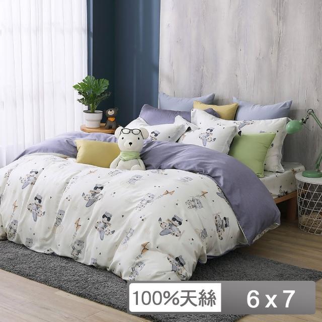 【HongYew 鴻宇】雙人兩用被套 天絲300織 台灣製(比飛熊)