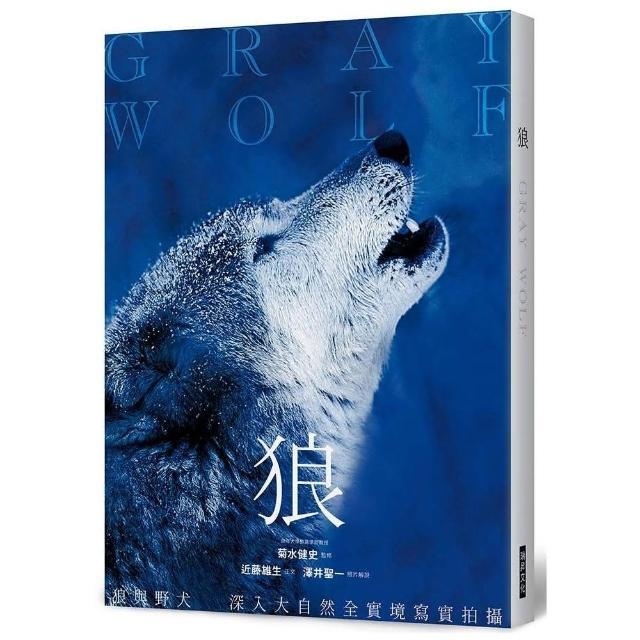 狼:狼與野犬 深入大自然全實境寫實拍攝