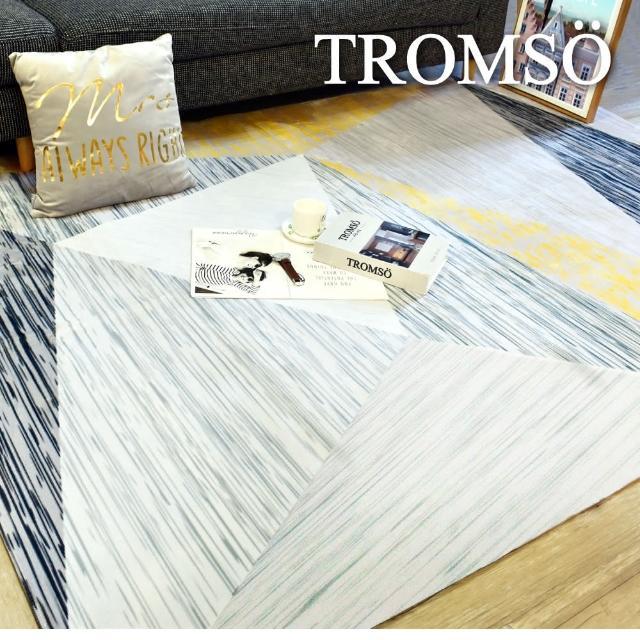 【TROMSO】珊瑚絨短毛地毯-特大V摩登幾何230x160cm(地毯地墊)