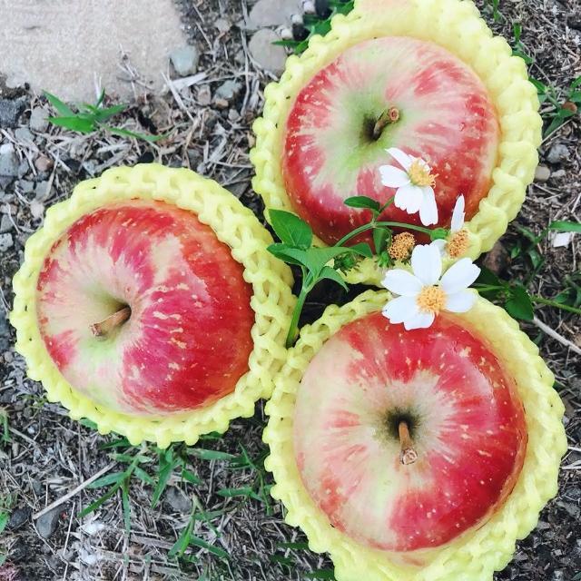 【水果達人】嚴選大顆 紐西蘭無臘蜜蘋果6顆* 4盒(蜜蘋果)