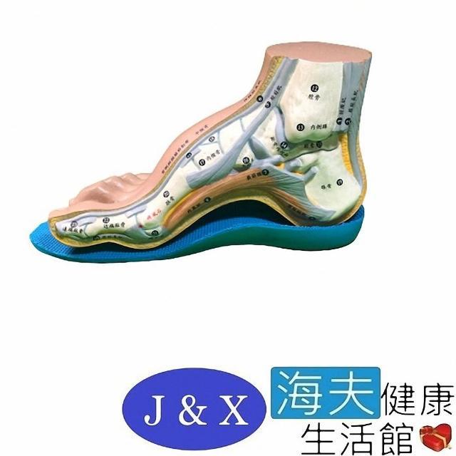 【海夫健康生活館】佳新 肢體裝具 未滅菌 佳新醫療 人體工學 線內側縱弓 吸震 高弓足鞋墊(JXFS-002)