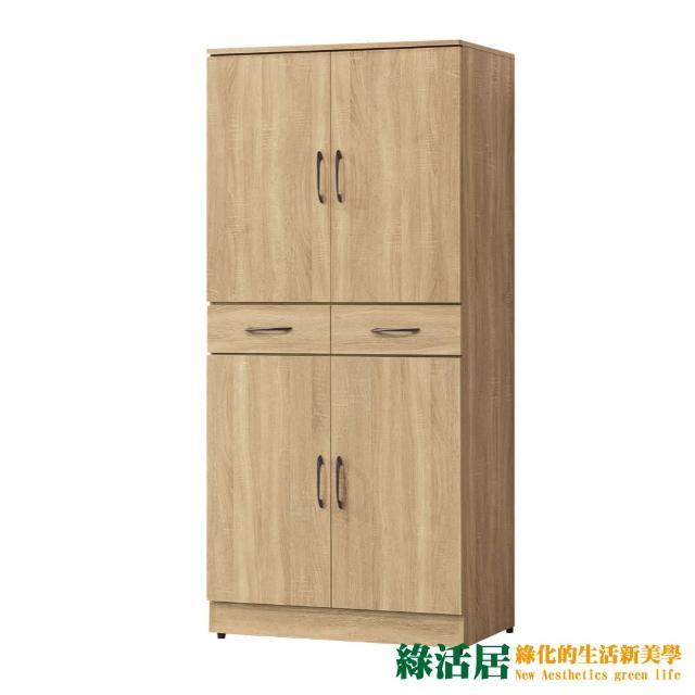 【綠活居】斯里巴 現代2.7尺二門二抽高鞋櫃/收納櫃(二色可選)
