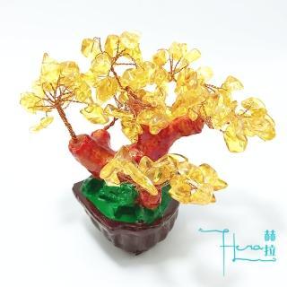 【HERA 赫拉】HERA財庫滿溢黃水晶招財樹/發財樹