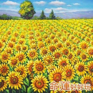 【命運好好玩】向陽財星風水畫