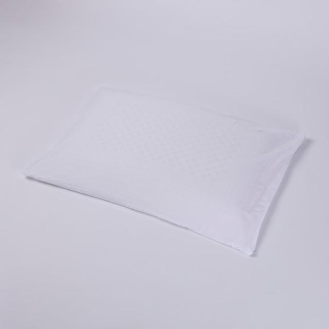 【HOLA】馬來西亞天然乳膠平面枕