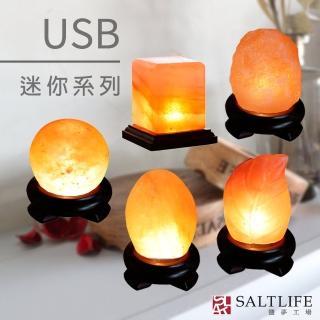 【鹽夢工場】創意造型鹽燈-USB系列(五款)