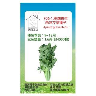 【蔬菜工坊】F06.西洋芹菜種子(美國芹)