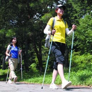 【樂活動】SINANO活力健走杖-2支入(全身運動、休閒運動、健走杖)