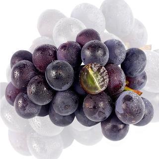 【果之家】高級巨峰葡萄10台斤(約10-14房)