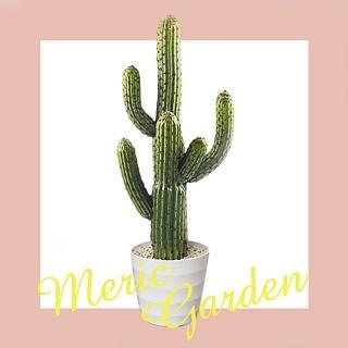 【Meric Garden】北歐風格居家裝飾高仿真大型景觀植栽擺設盆栽(柱型仙人掌)