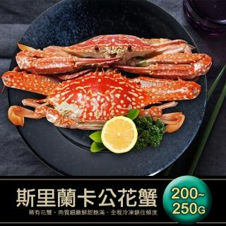【築地一番鮮】斯里蘭卡生凍公花蟹5隻(200-250g/隻)