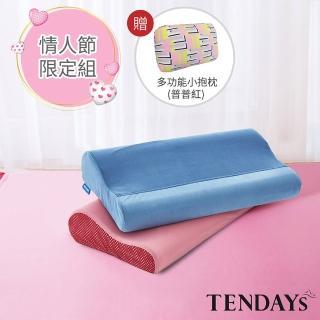 【TENDAYS】2入組DS柔眠枕 乾燥玫瑰+冰湖藍(記憶枕 8cm/10cm任選)