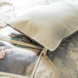 【棉床本舖】〔防水〕台灣製 枕頭的防水透氣保潔墊(枕頭專用 防水/防塵防汙/抗菌防?)