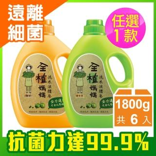 【全植媽媽】洗衣液體皂-1800gx6瓶 任選1入(橙花香/檀香)