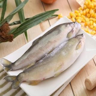 【華得水產】特選超爆卵母無毒香魚1盒(8-10尾/1kg/包)