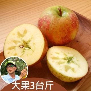 【台灣好農】梨山阿忠蜜蘋果_大果_3台斤/箱(蜜蘋果)
