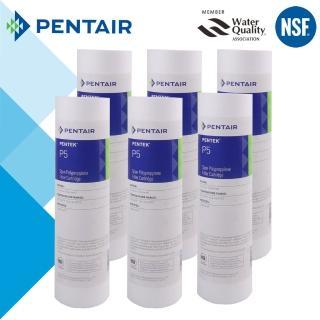 【怡康】PENTAIR 標準10吋5微米PP棉濾芯-6支組