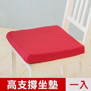 【凱蕾絲帝】台灣製造-久坐專用二合一高支撐記憶聚合紓壓坐墊(棗紅-一入)