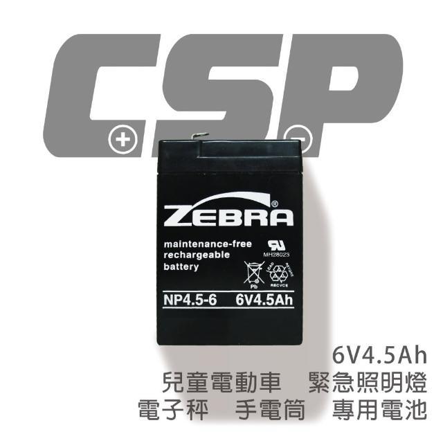 【CSP】NP4.5-6