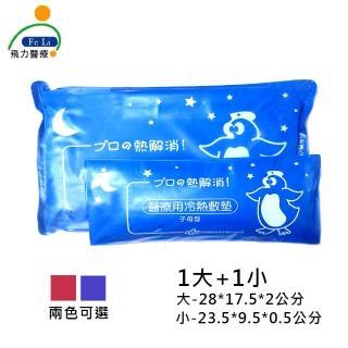 【Fe Li 飛力醫療】醫療用冷熱敷墊(母子型冰枕)