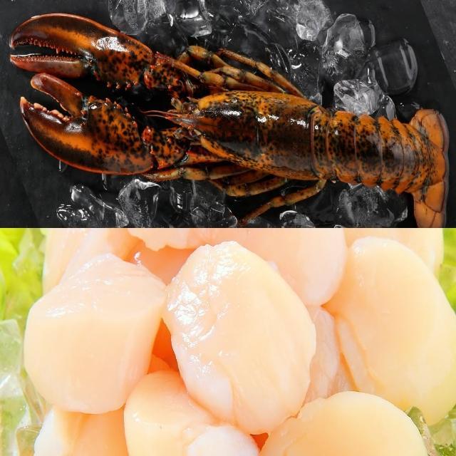 【華得水產】日本生食級干貝1件+波士頓龍蝦1尾(組)
