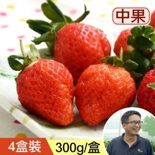 【台灣好農】阿羽哥的達人草莓_中果_4盒裝(草莓)