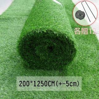 【園藝世界】特大捲人造草皮-200*1250公分