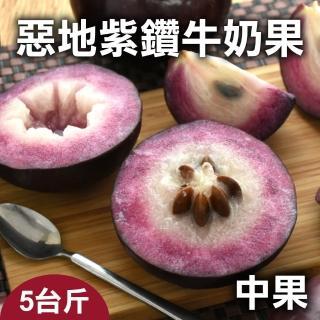 【台灣好農】惡地紫鑽牛奶果_大果_5台斤(牛奶果)