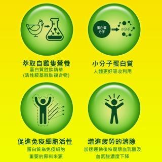 【白蘭氏】雙認證雞精6入裝x5盒 送養蔘飲3瓶(提升體力、免疫力 抗疲勞)-週期購