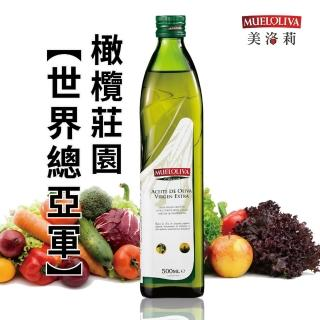 【西班牙美洛莉】晶藏特級冷壓初榨橄欖油(500mlX8罐優惠組)