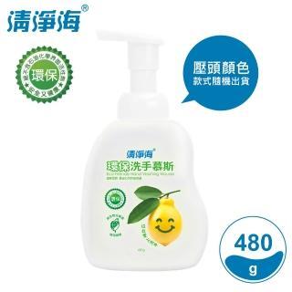 【清淨海】環保洗手慕斯 檸檬飄香 480g