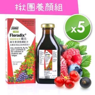 【歐洲屋】德國草本液-Floradix鐵元(5瓶超值價)