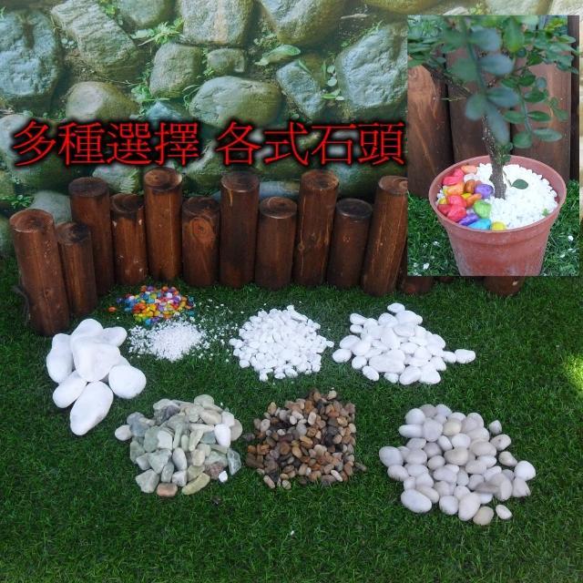 【園藝世界】白色鵝卵石