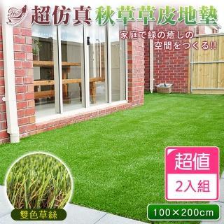 【Effect】綠能空間超仿真雙色草皮地墊(200*100cm/2入組)