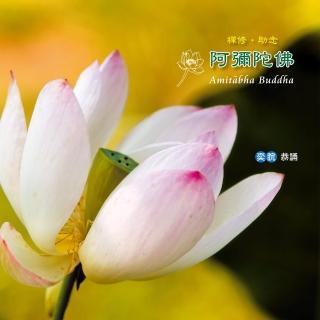 【諦聽文化】阿彌陀佛-禪修.助念(佛曲唱頌系列)