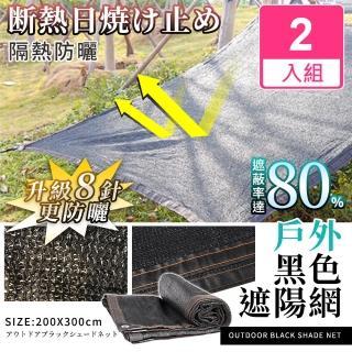 【Effect】戶外防曬隔熱黑色遮陽網(2入組/200x300cm)