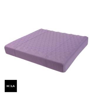 【HOLA】高密度抗菌健康工學按摩坐墊紫色
