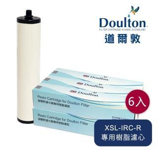 【DOULTON 道爾敦】美國陶氏DOW樹脂濾芯六入組(XSL-IRC-R)