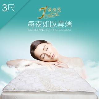【J-style婕絲黛】台製天絲加厚型防蹣透氣日式床墊(單人3尺)