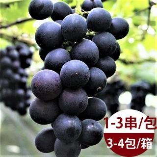 【水果達人】外銷黑金剛巨峰葡萄禮盒3斤1箱(巨峰葡萄)