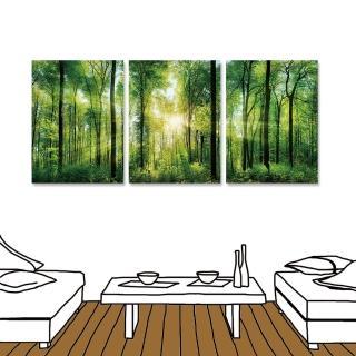 【24mama 掛畫】三聯式 陽光 叢林 森林 植物 樹木 草木 招財 風水 芬多精 自然 風景 30x40cm(森林之歌)