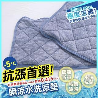 【HongYew 鴻宇】涼感-5度C瞬涼可洗抗菌枕頭保潔墊2入(SUPERCOOL接觸涼感)