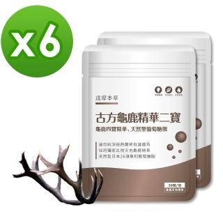 【達摩本草】古方龜鹿關鍵精華二寶x6包(專利二型膠原蛋白、靈敏行動力)