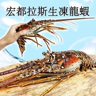 【RealShop 真食材本舖】宏都拉斯生凍龍蝦 500g